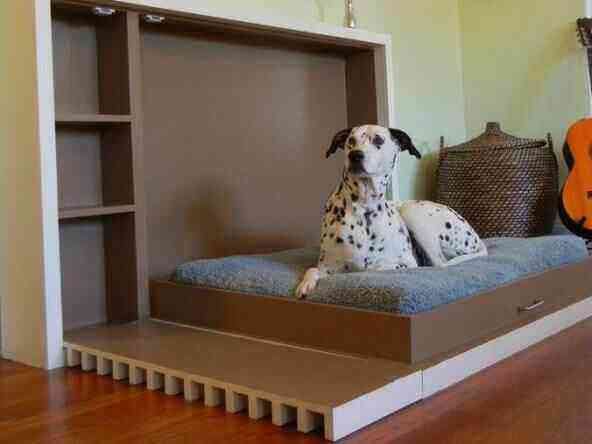 Features of Dog-Friendly Homes
