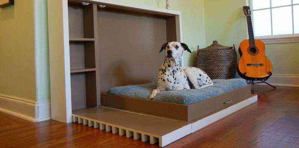 Features of Dog-Friendly Homes, dog friendly homes