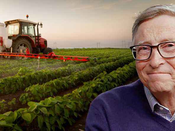 Bill Gates is now the Largest Farmland owner in USA